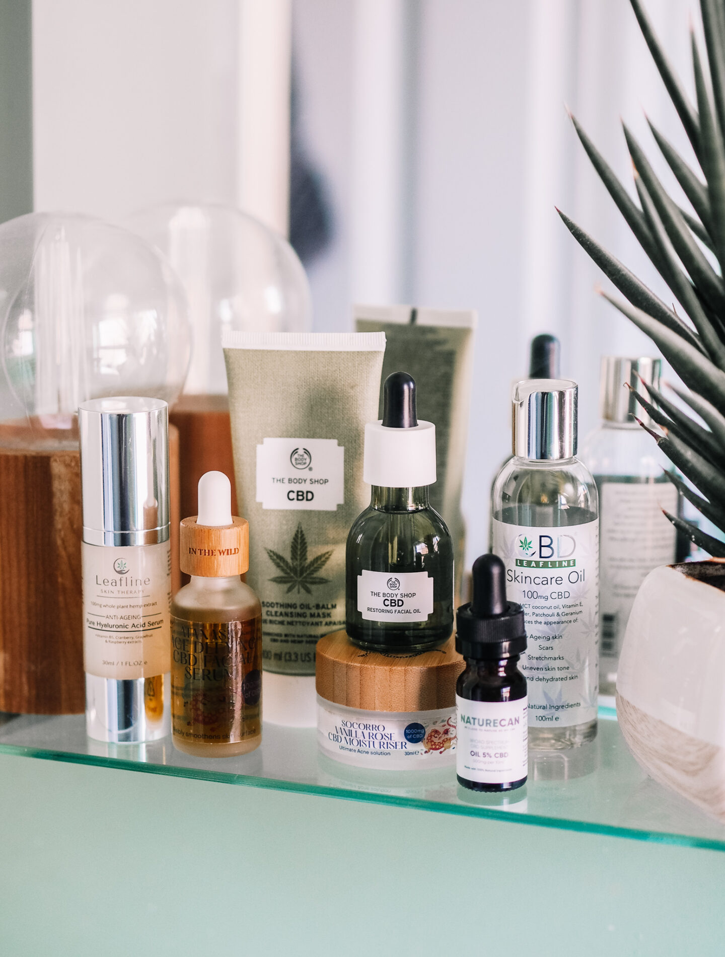 CBD In Your Beauty & Wellness Regime: All You Need To Know